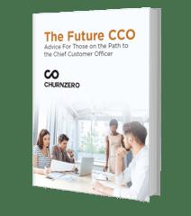 Future CCO.png